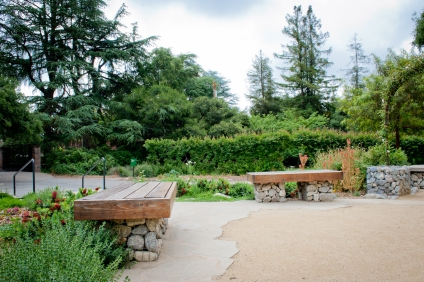 Looking back toward the entrance and dining patio