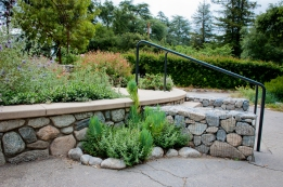Breaks in the pavement allow water to percolate into the groundwater table, cleansed by the foliage and soil.